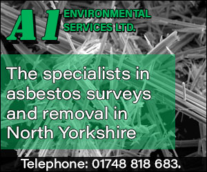 A1 Environmental Services Ltd