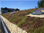 Green roof with skylight Gallery Thumbnail