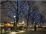 Southbank LED tree lighting Gallery Thumbnail