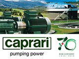 Caprari Pumps UK LTD