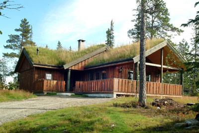 Norwegian Log Cabins London Timber Framed Buildings