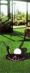 Astroturf Artificial Grass Image