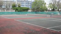 A1 Courts Image