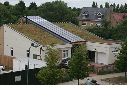 Roof garden df