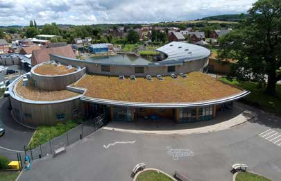 Blackdown Green Roofs Image