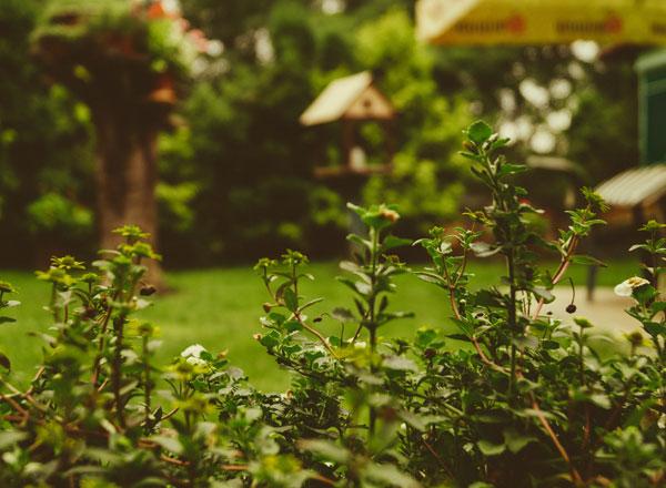 James Brokenshire Calls For 'Increase In Garden Towns'